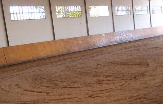 03--Pista-Interior-Cubierta Donde montar a caballo en zaragoza paddocks zaragoza estabulacion zaragoza