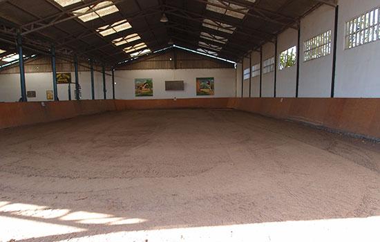 05-Pista-interior-pony-club Donde montar a caballo en zaragoza paddocks zaragoza estabulacion zaragoza