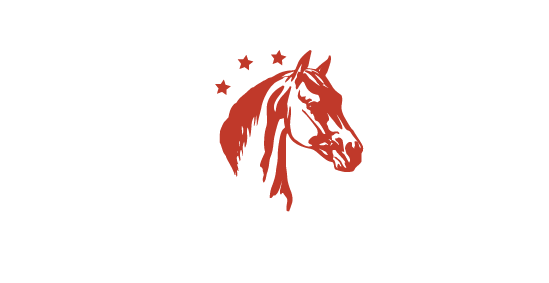 Hípica - Pony Club Aragón